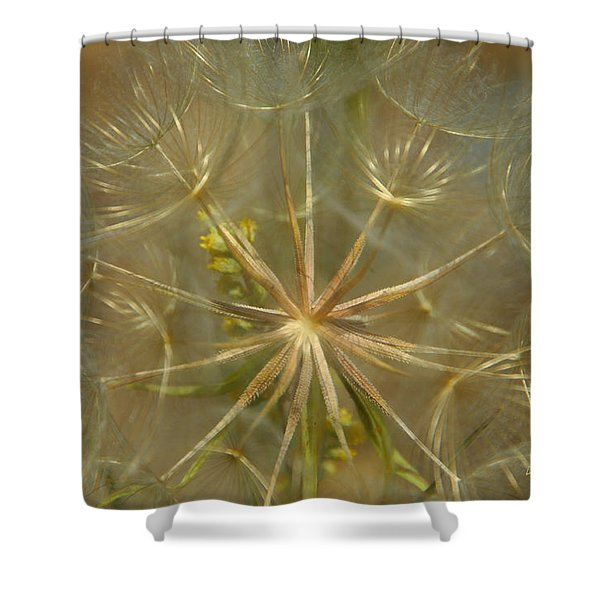 Make A Wish Shower Curtain by Donna Blackhall