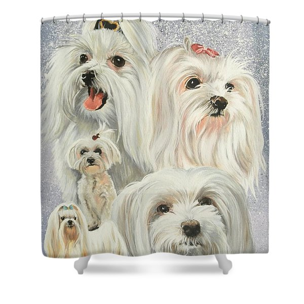Maltese Collage Shower Curtain by Barbara Keith