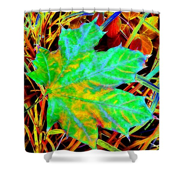 Maple Mania 21 Shower Curtain by Will Borden