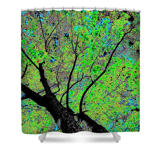 Moon Over The Maples Shower Curtain by Will Borden
