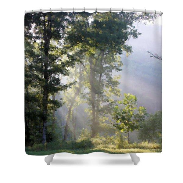 Morning Sun Shower Curtain by Kristin Elmquist