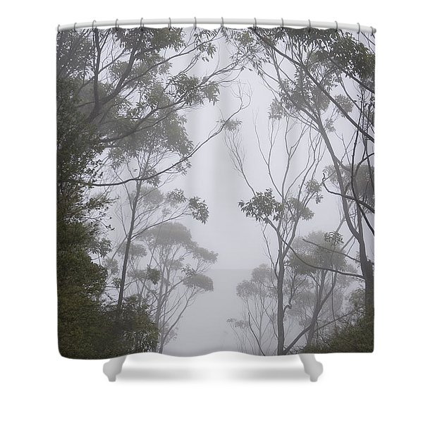 Mt Lanaihale, Munro Trail Shower Curtain by Greg Vaughn - Printscapes