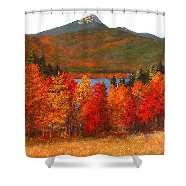 Mt.Chocorua Shower Curtain by Jack Skinner