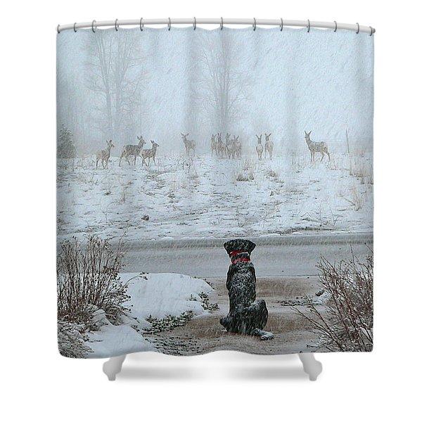 Murphy Watches The Deer Shower Curtain by Eric Tressler