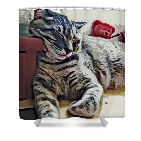 Nap Number Ten Shower Curtain by David G Paul