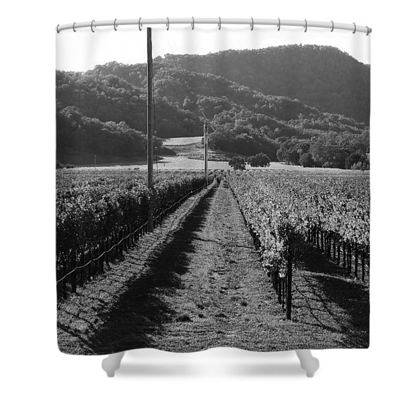 Napa Valley Vineyard .  Black and White . 7D9020 Shower Curtain by Wingsdomain Art and Photography