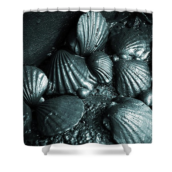 Oil Spill Shower Curtain by Carlos Caetano