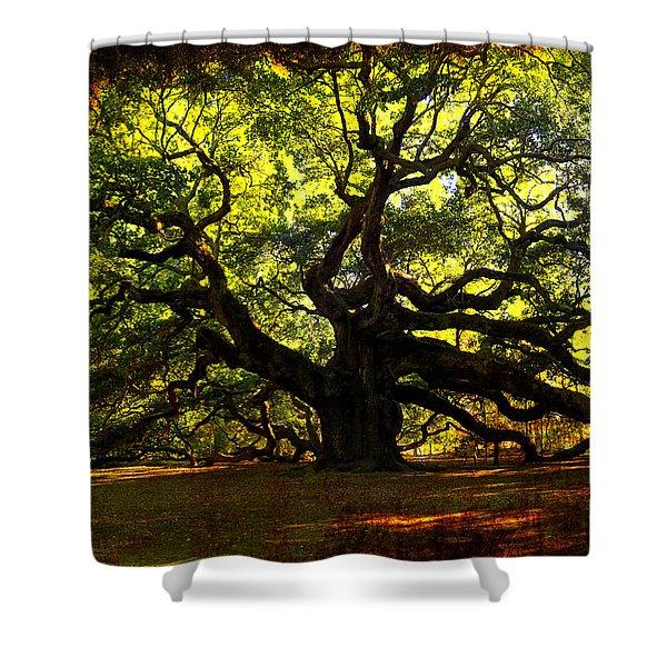 Old old Angel Oak in Charleston Shower Curtain by Susanne Van Hulst