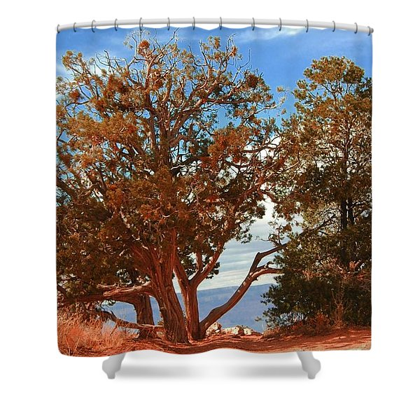 On The Edge Shower Curtain by Kathleen Struckle