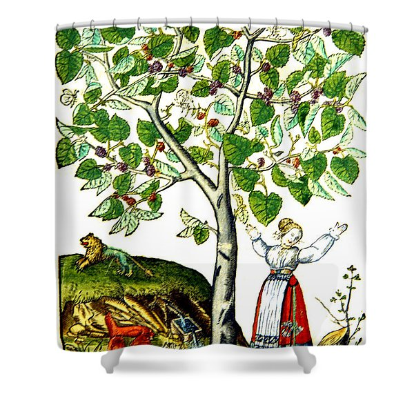 Ovids Pyramus And Thisbe Myth Shower Curtain by Photo Researchers