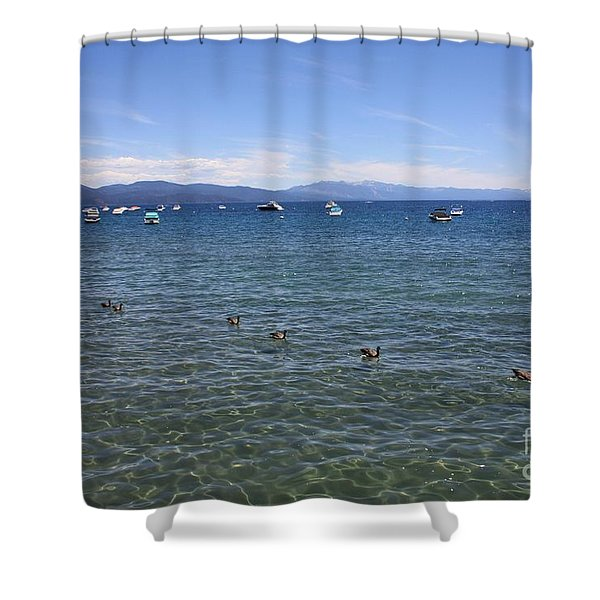 Parade Of Geese Shower Curtain by Carol Groenen