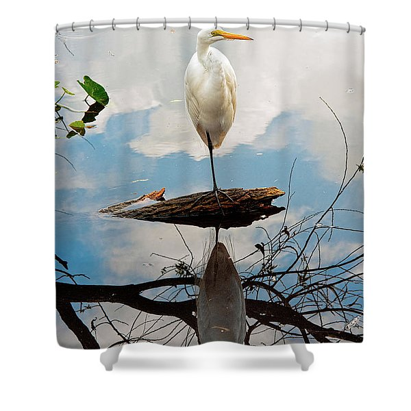 Parallel Worlds Shower Curtain by Christopher Holmes