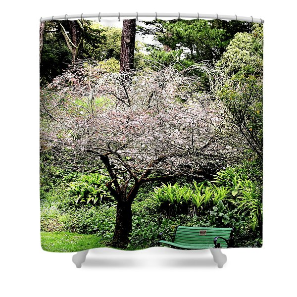 Park Bench at The Old Cherry Blossom Tree . 7D5804 Shower Curtain by Wingsdomain Art and Photography