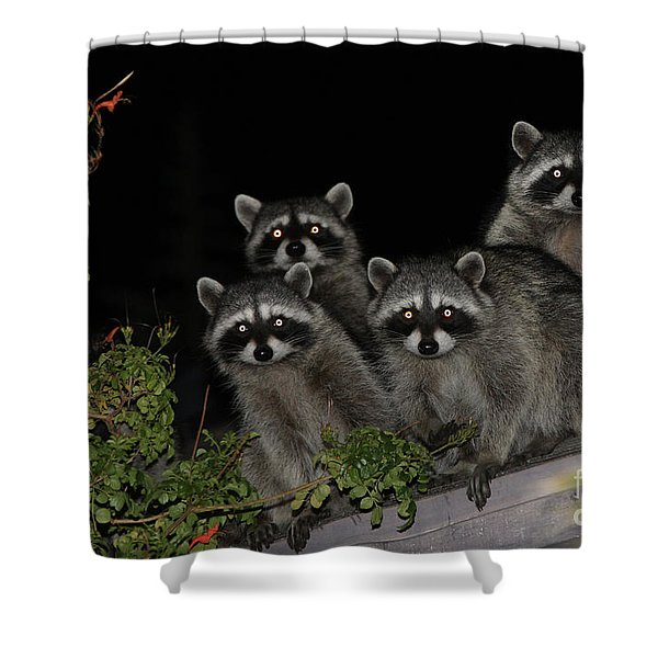 Party Of Five On The Roof Top Shower Curtain by Nina Prommer