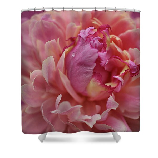 Peony Opening Shower Curtain by Sandy Keeton