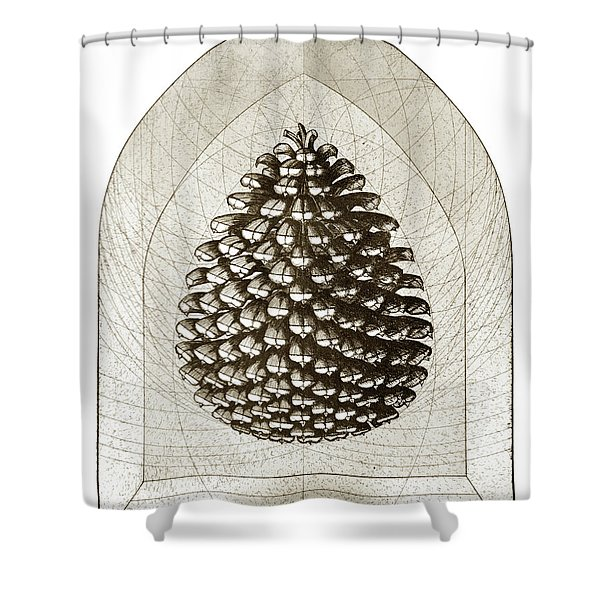 Pinecone Shower Curtain by Charles Harden