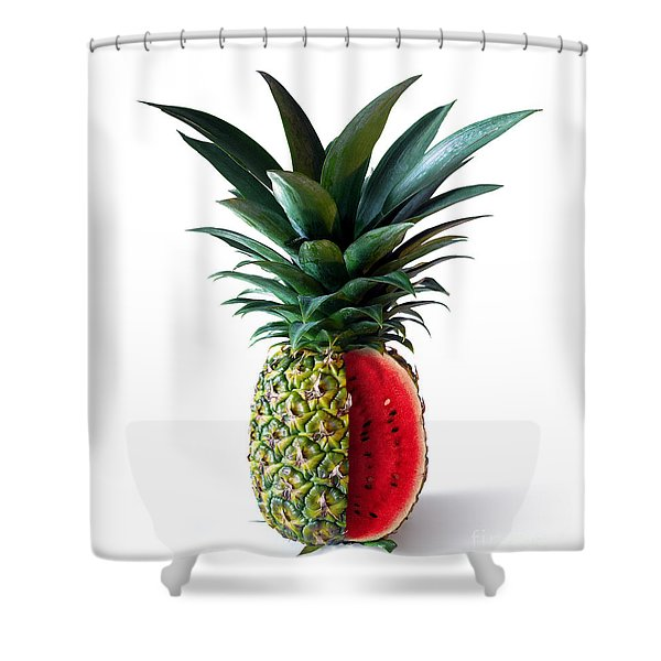 Pinemelon 2 Shower Curtain by Carlos Caetano