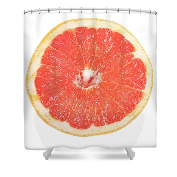 Pink Grapefruit Shower Curtain by James BO  Insogna