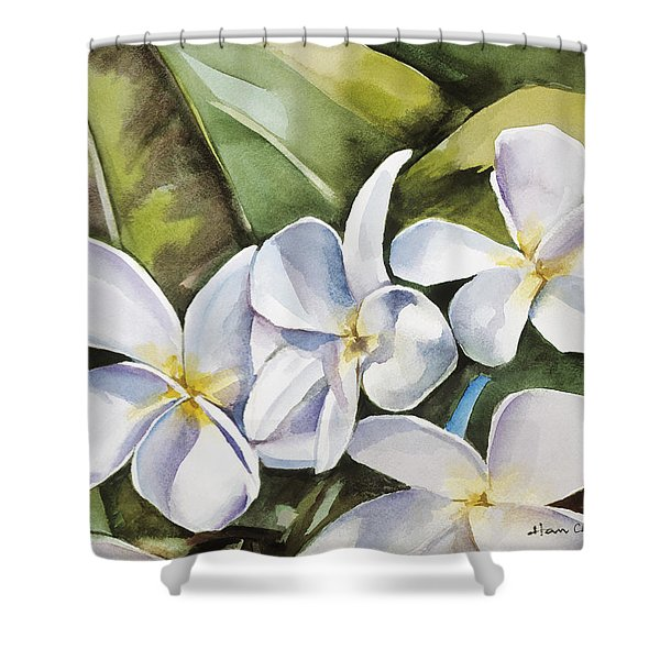Plumeria II Shower Curtain by Han Choi - Printscapes