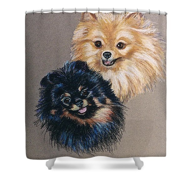 Pomeranian Pair Shower Curtain by Susan Herber