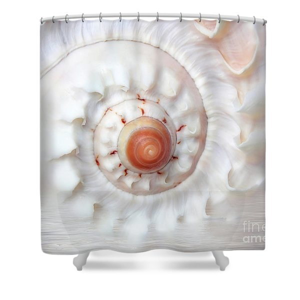 Purify Shower Curtain by Photodream Art