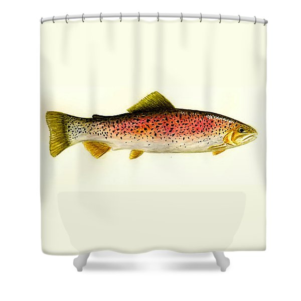 Rainbow Trout Shower Curtain by Michael Vigliotti
