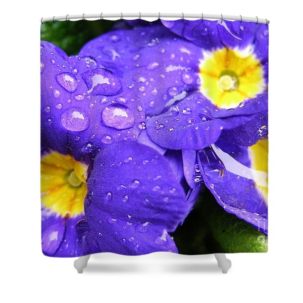 Raindrops On Blue Flowers Shower Curtain by Carol Groenen