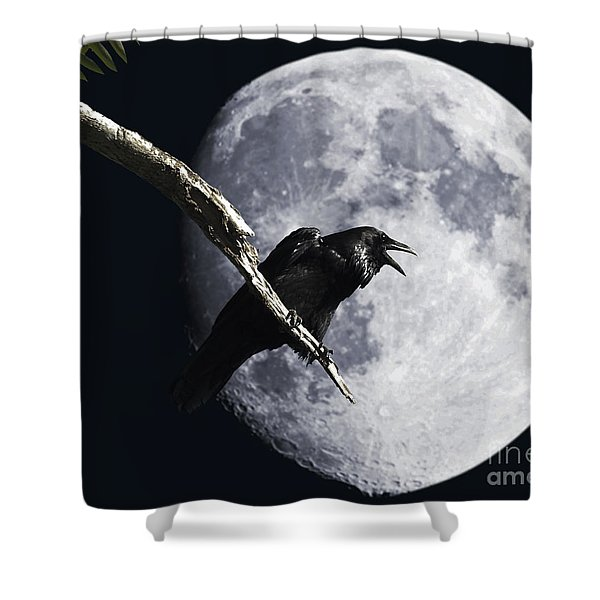 Raven Barking at the Moon Shower Curtain by Wingsdomain Art and Photography