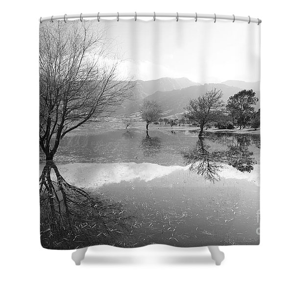 Reflected Trees Shower Curtain by Gaspar Avila