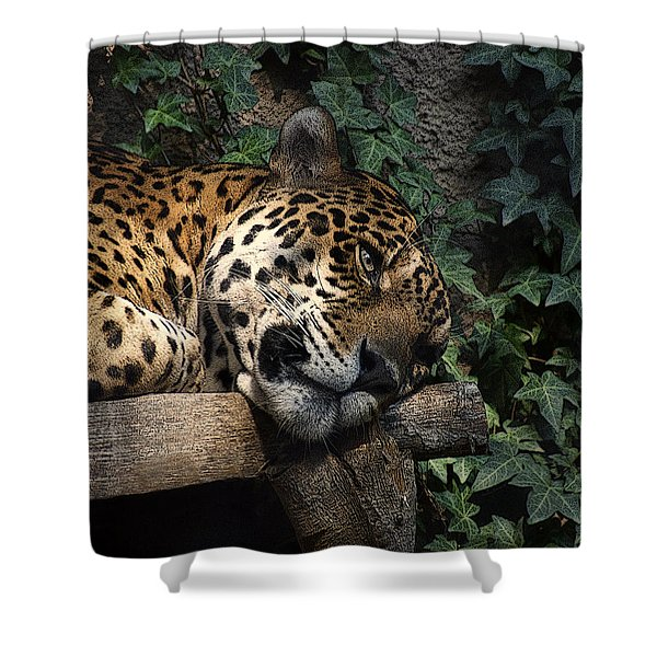 Relaxing Shower Curtain by Ernie Echols