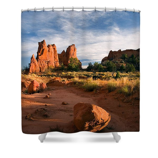 River Of Sand Shower Curtain by Mike  Dawson