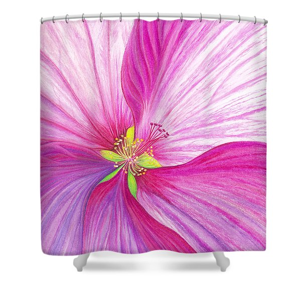 Rose Mallow Shower Curtain by Amy Tyler