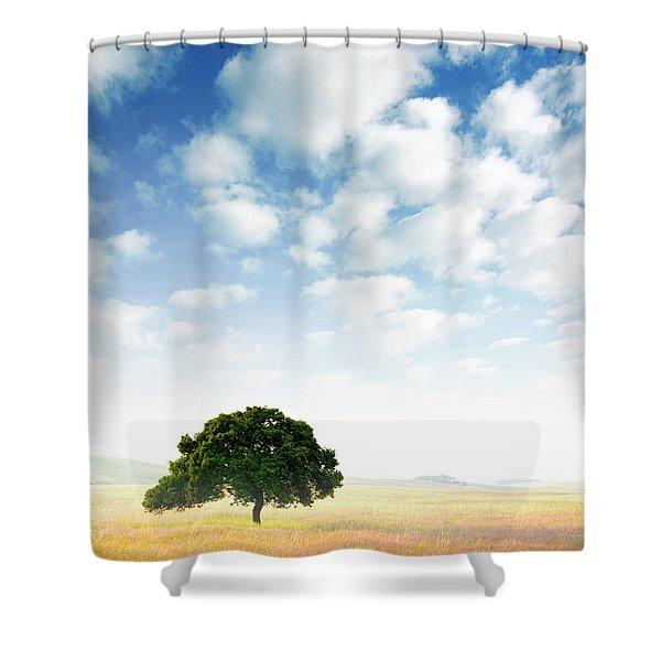Rural Scene Shower Curtain by Carlos Caetano