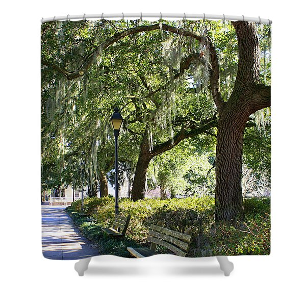 Savannah Benches Shower Curtain by Carol Groenen
