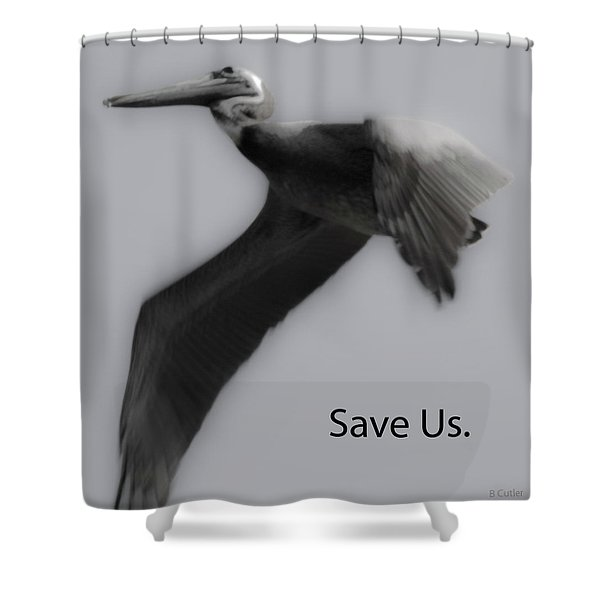 Save The Pelicans Shower Curtain by Betsy C  Knapp