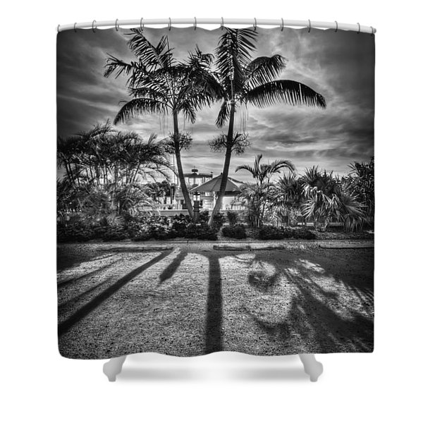 Shadow Waltz Shower Curtain by Evelina Kremsdorf