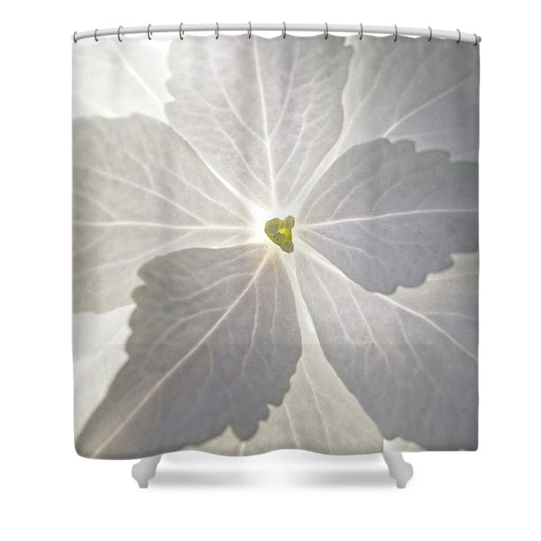 Shooting Star Shower Curtain by Christopher Holmes