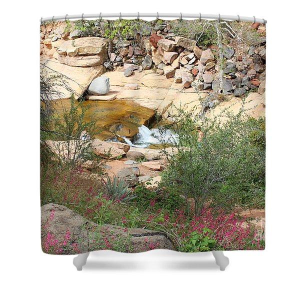 Slide Rock with Pink Wildflowers Shower Curtain by Carol Groenen