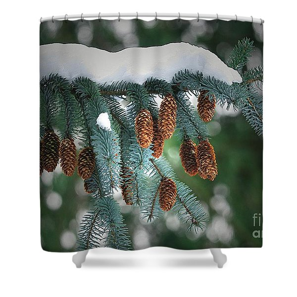 Snow Cones Shower Curtain by Sharon  Talson