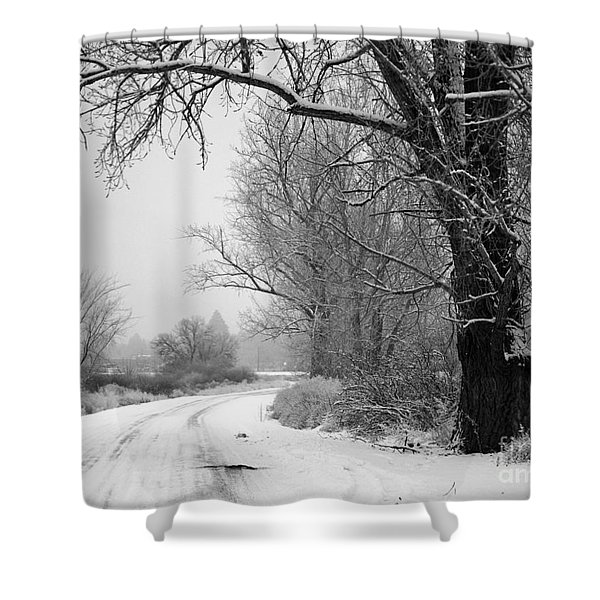 Snowy Branch Over Country Road - Black And White Shower Curtain by Carol Groenen