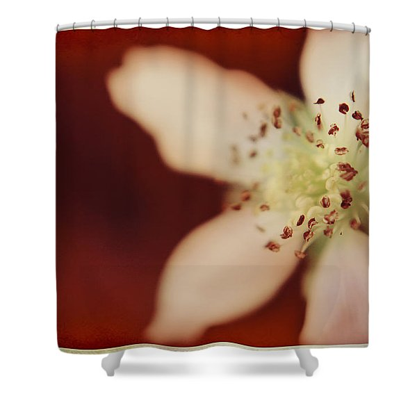 Spirit Shower Curtain by Laurie Search