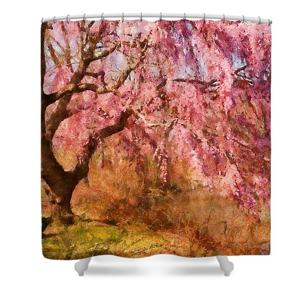 Spring - Sakura - A Beautiful Spring day  Shower Curtain by Mike Savad