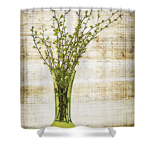 Spring Vase Shower Curtain by Elena Elisseeva
