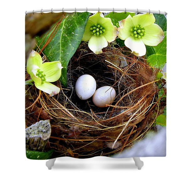 Springtime Shower Curtain by KAREN WILES