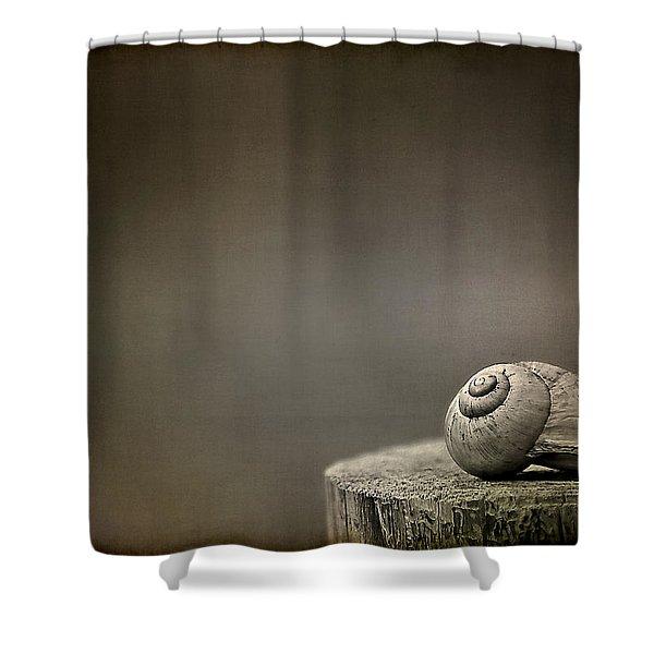 Stay Shower Curtain by Evelina Kremsdorf
