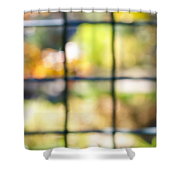 Sunny outside Shower Curtain by Elena Elisseeva