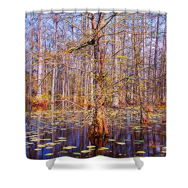 Swamp Tree Shower Curtain by Susanne Van Hulst