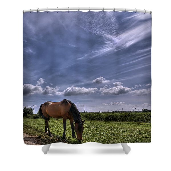 Sweet Country Scents Shower Curtain by Evelina Kremsdorf