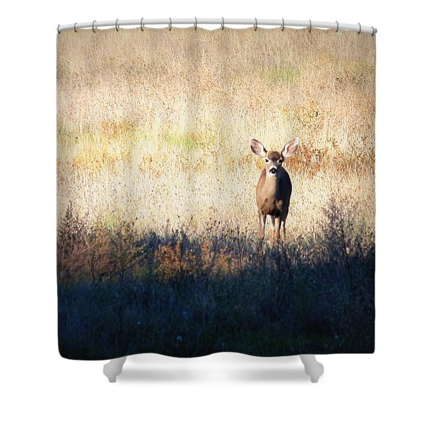 Sycamore Grove Series 2 Shower Curtain by Carol Groenen