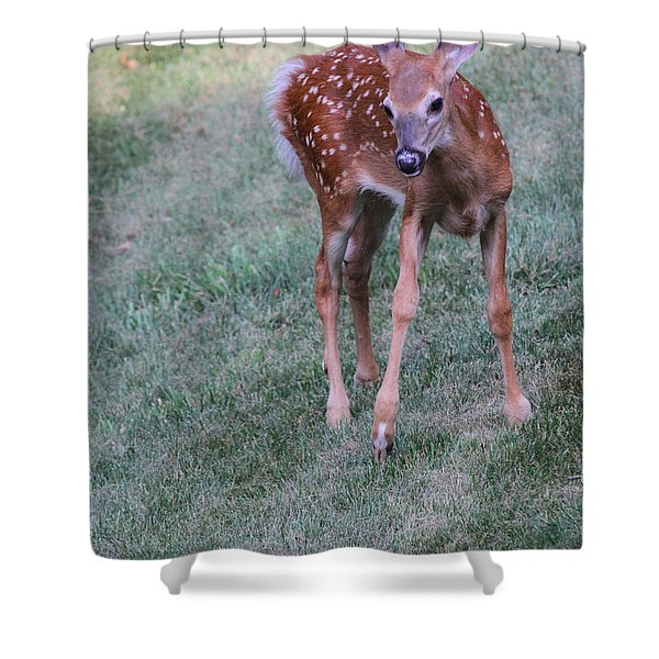 The Bambi Stance Shower Curtain by Karol  Livote